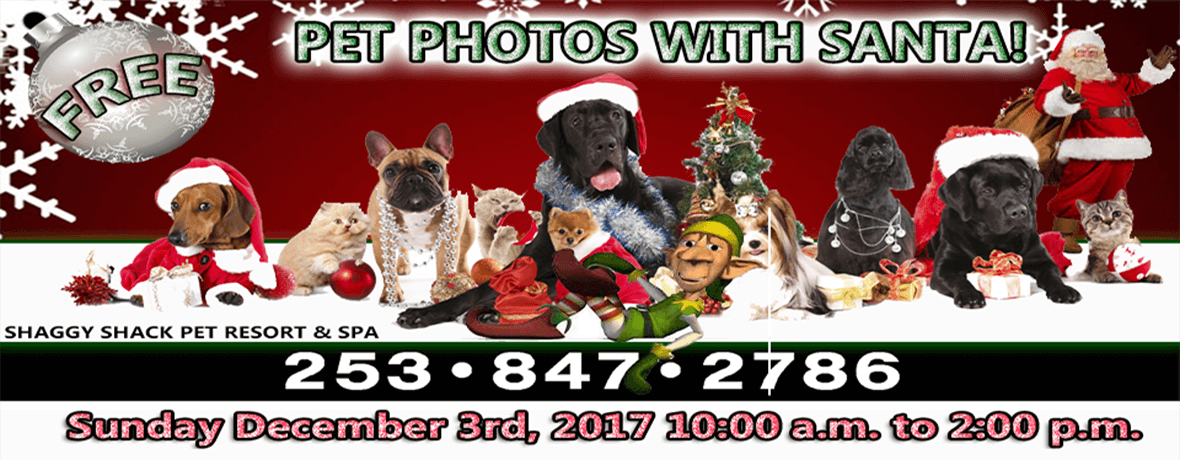 Shaggy Shack Pet Resort and Spa presents: PET PHOTOS WITH SANTA! Sunday December 3rd, 2017 10:00 a.m. to 2:00 p.m.